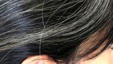 آیا موهای سفید می توانند دوباره سیاه شوند؟